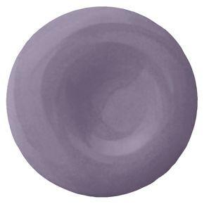 Devine Color Starlight Paint Assorted Sizes Purple