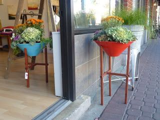 Blooming Desert's Daily Dirt: Potting up Steel Life's Matchstick planter