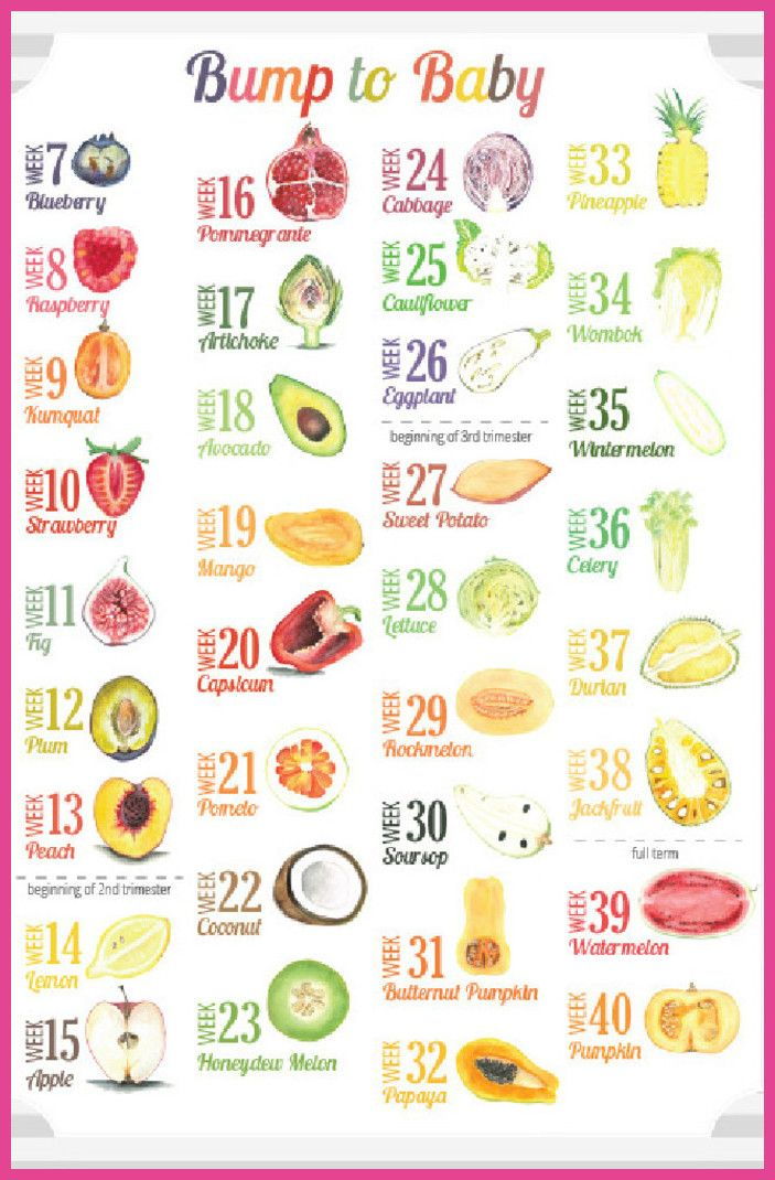 Pregnancy first the what when where and how of employment during for more information visit image link pregnancytips also week by size chart growing baby using fruits vegetables rh pinterest