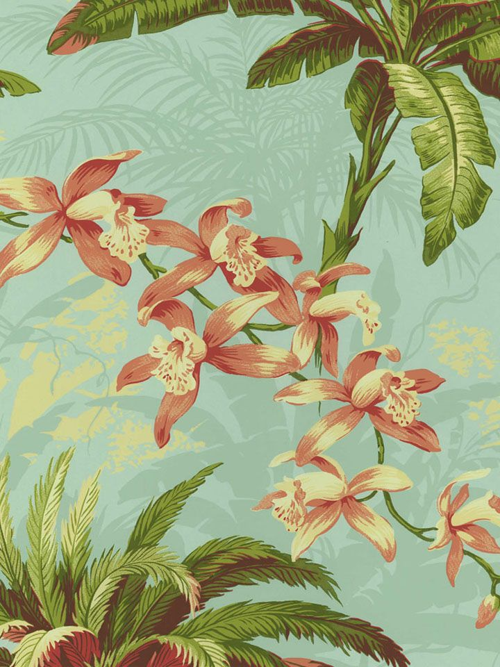 tommy bahama wallpaper  TB2084 ― tommy bahama wallpaper at Eades | Home | Pinterest | Tommy ...
