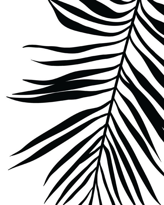 22++ Tropical leaf clipart black and white ideas in 2021