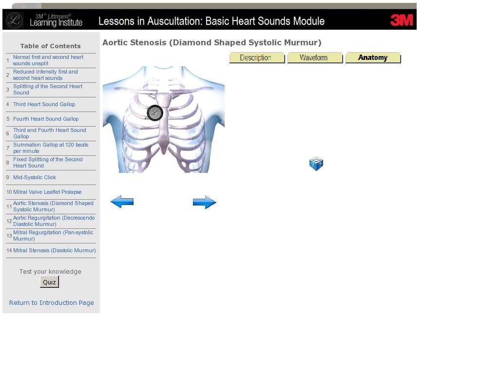 Exelent Basic Cardiac Anatomy Illustration Human Anatomy Images