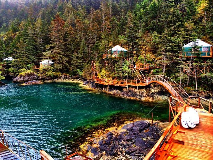 Superieur Orca Island Cabins; One Of The Best In The West