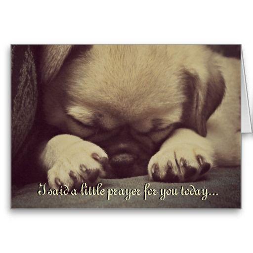 Cute Puppy Dog Get Well Soon Greeting Card Zazzle Com Get Well
