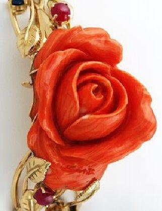 Fleur de corail rouge