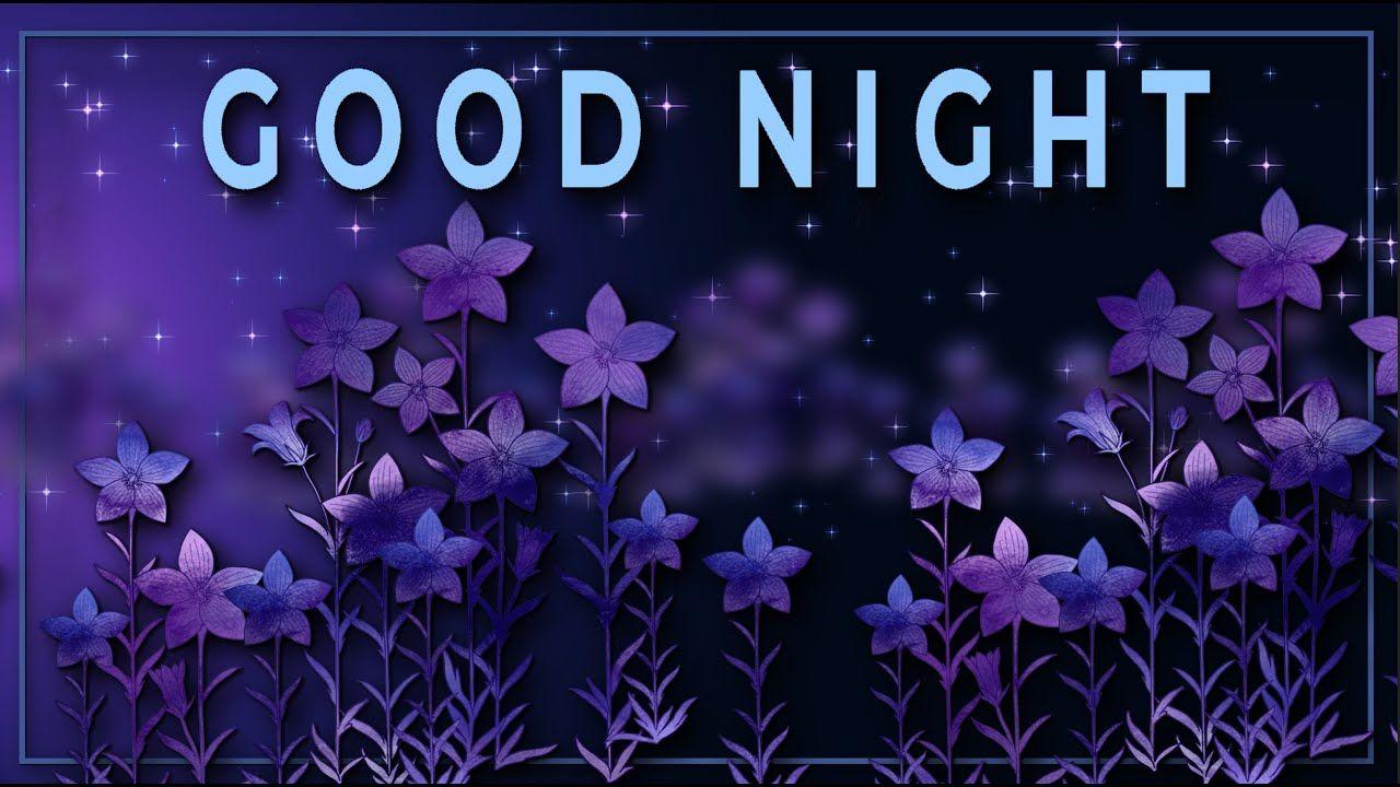 Good Night Animation Greeting Cards 4k Whatsapp Animated Greeting Cards Good Night Flowers Music Visualization