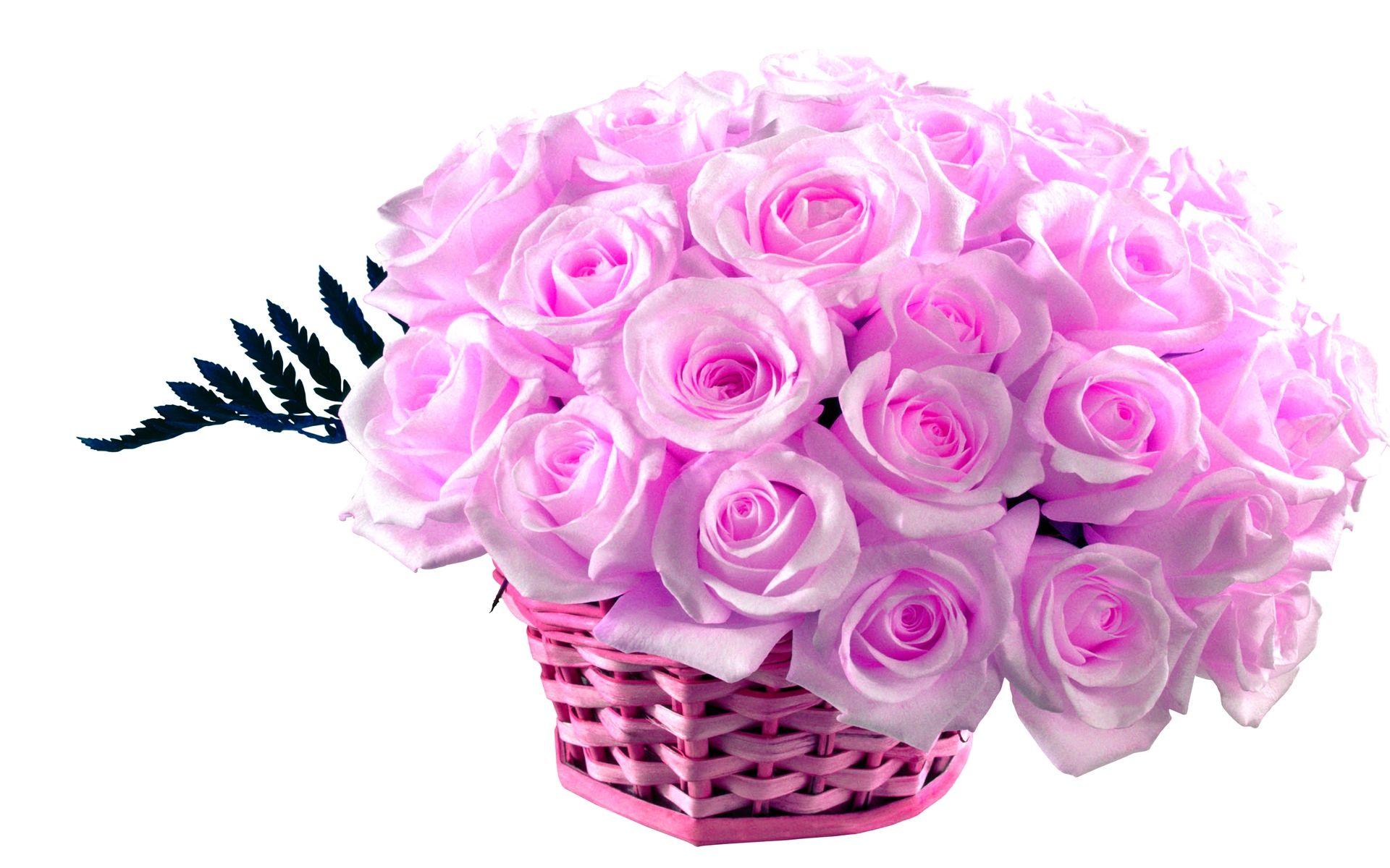 Light Pink Rose Bakset