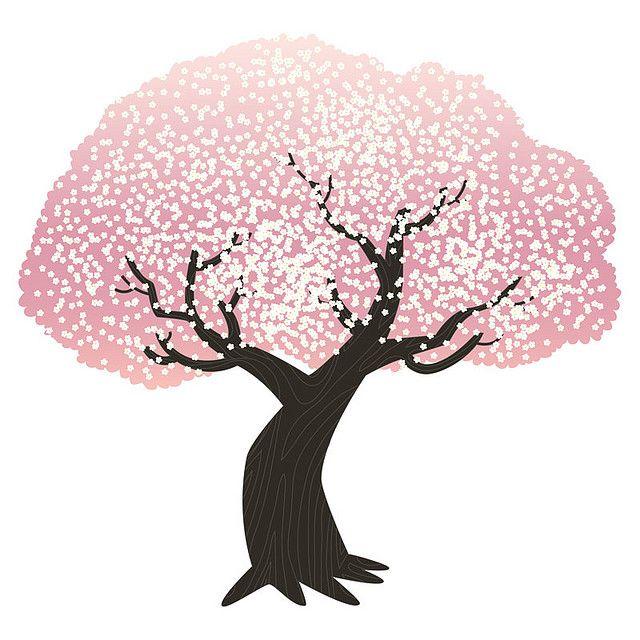 Cherry Blossom Tree Cherry Blossom Drawing Tree Drawing Blossom Trees