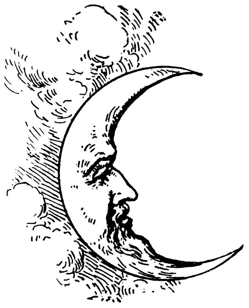 Pin By Shelby Ricci On Tattoos Piercings Moon Tattoo Moon Drawing Half Moon Tattoo