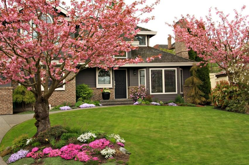 20 Perfect Front Yard Landscaping Ideas For Spring | Trees ...