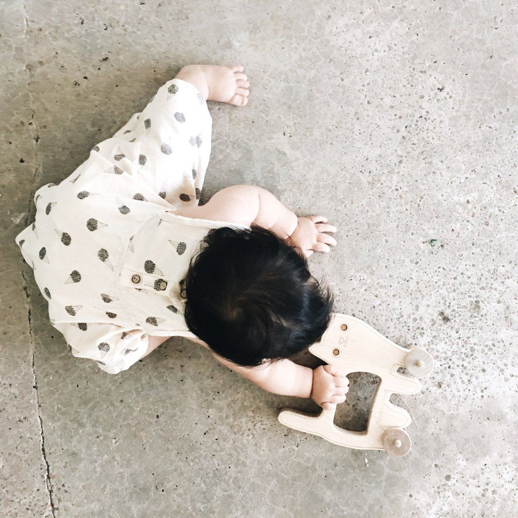 This Is The Perfect Toy For A One Year Old. Push Toys