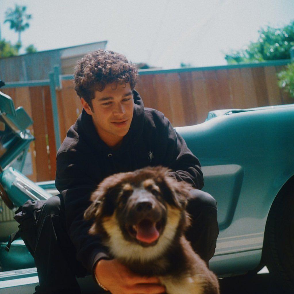Austin Mahone, Gsd Puppies, Photo