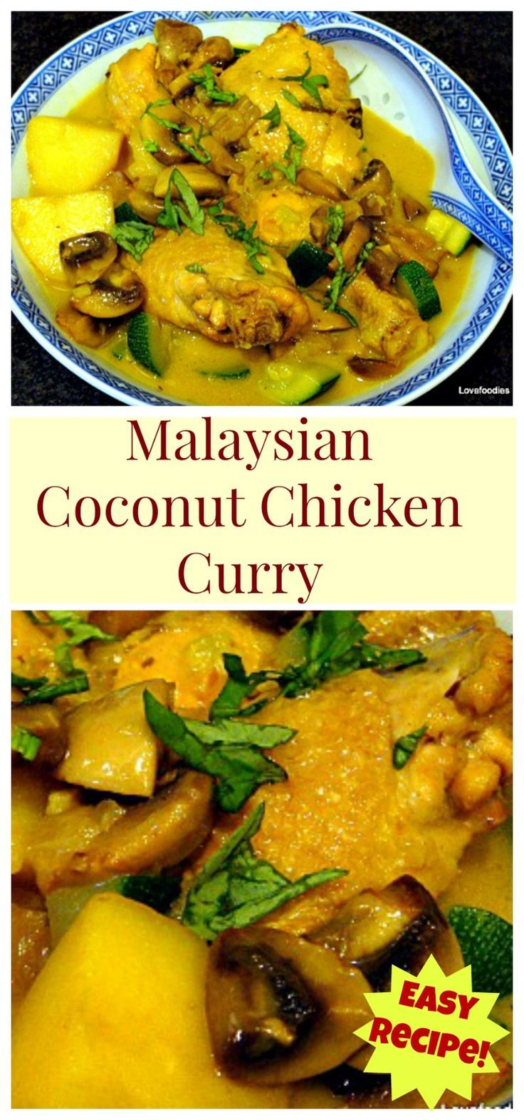 Cheats Malaysian Coconut Chicken & Potato Curry - Easy no fuss dinner and goes great with some rice or naan breads. Yummy!