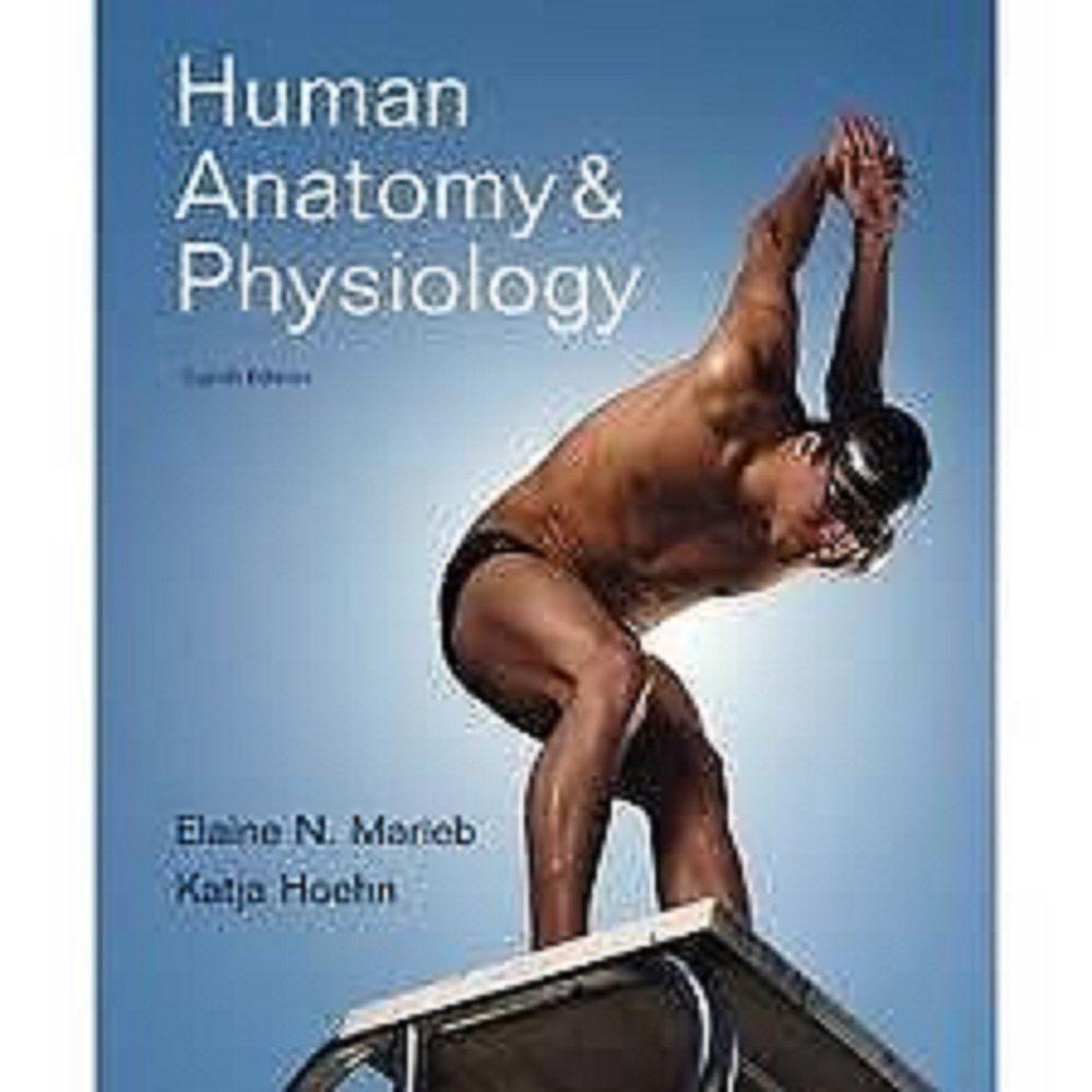 Dorable Fundamentos De La Anatomía Y Fisiología Humana 10ª Edición ...