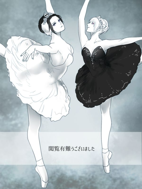 Oh My God Austria And Prussia Look So Fab In Ballerina Tutus But Why Are They Even Doing That Xd Swan Lake W Aph Hetalia A Beautiful World