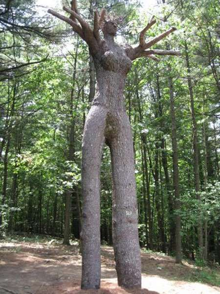 Amazing trees the and cool tree sculptures by