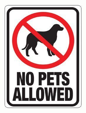 Hy Ko 20616 No Pets Allowed Plastic Sign 12 X9 Pack Of 10 By Hy Ko 5 98 Sign States No Pets Allowed With A Red Plastic Signs Pet Signs Sign Materials