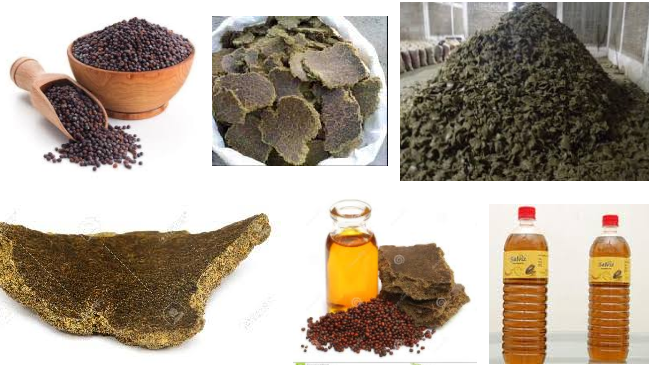 We are provide all details on Mustard Seed Oil Cake Import