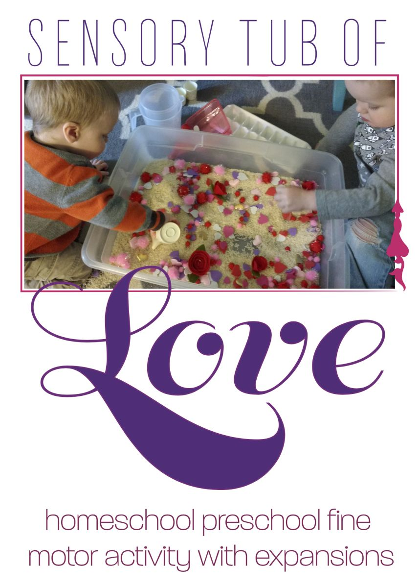 A super easy, super cheap, super fun, and super messy (haha!) Valentine's Day sensory tub with expansions! Fine motor, language development, and imaginative play work.