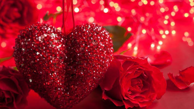 Rose 5k 4k Wallpaper Heart Valentine S Day Love Romance Red Romantic H Happy Valentines Day Wishes Happy Valentines Day Pictures Valentines Day Wishes
