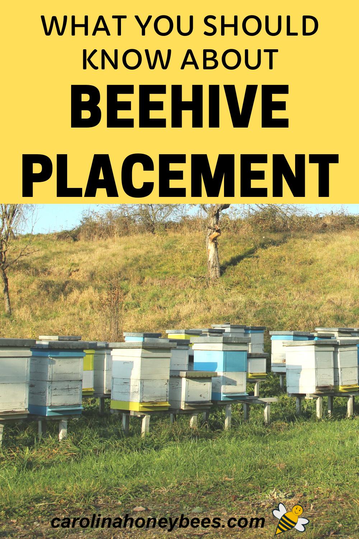 Pin on Backyard Beekeeping
