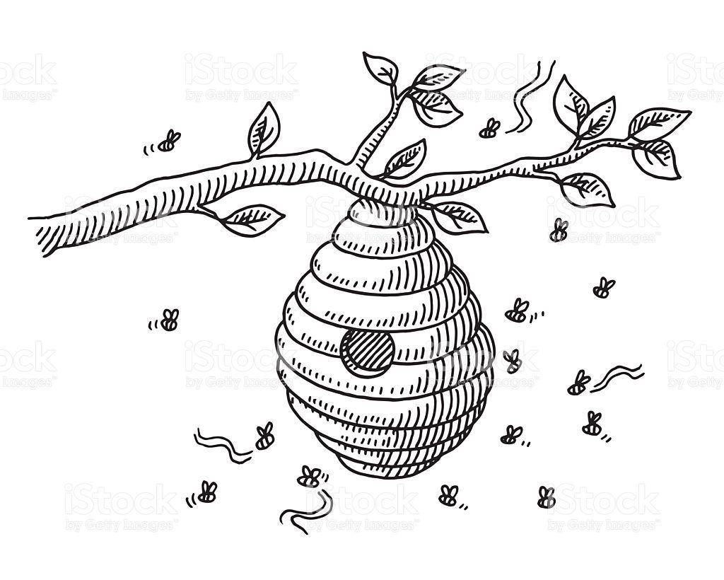 Beehive On Branch Drawing Vector Id484698642 1024 820 Bee Drawing Bee Art Beehive Drawing