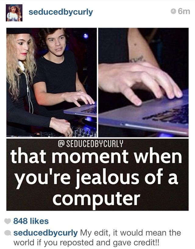Follow Her On Instagram Best Fan Account Ever Seducedbycurly Seducedbycurly Seducedbycurly One Direction Niall 1d Funny One Direction
