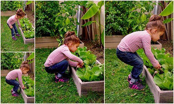 Un enfant cultivant son jardin en permaculture jardinage for Rendement permaculture