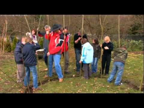 Gartenpavillon selber bauen 2 Ideen mit Bauanleitung - gartenpavillon selber bauen