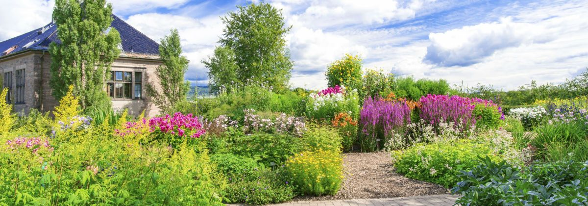 Tweed Landscape & Maintenance looks forward to working with you in New Haven, CT to create a landscape maintenance plan that is covers your requirements.