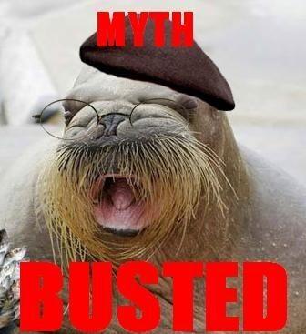 myth busted!