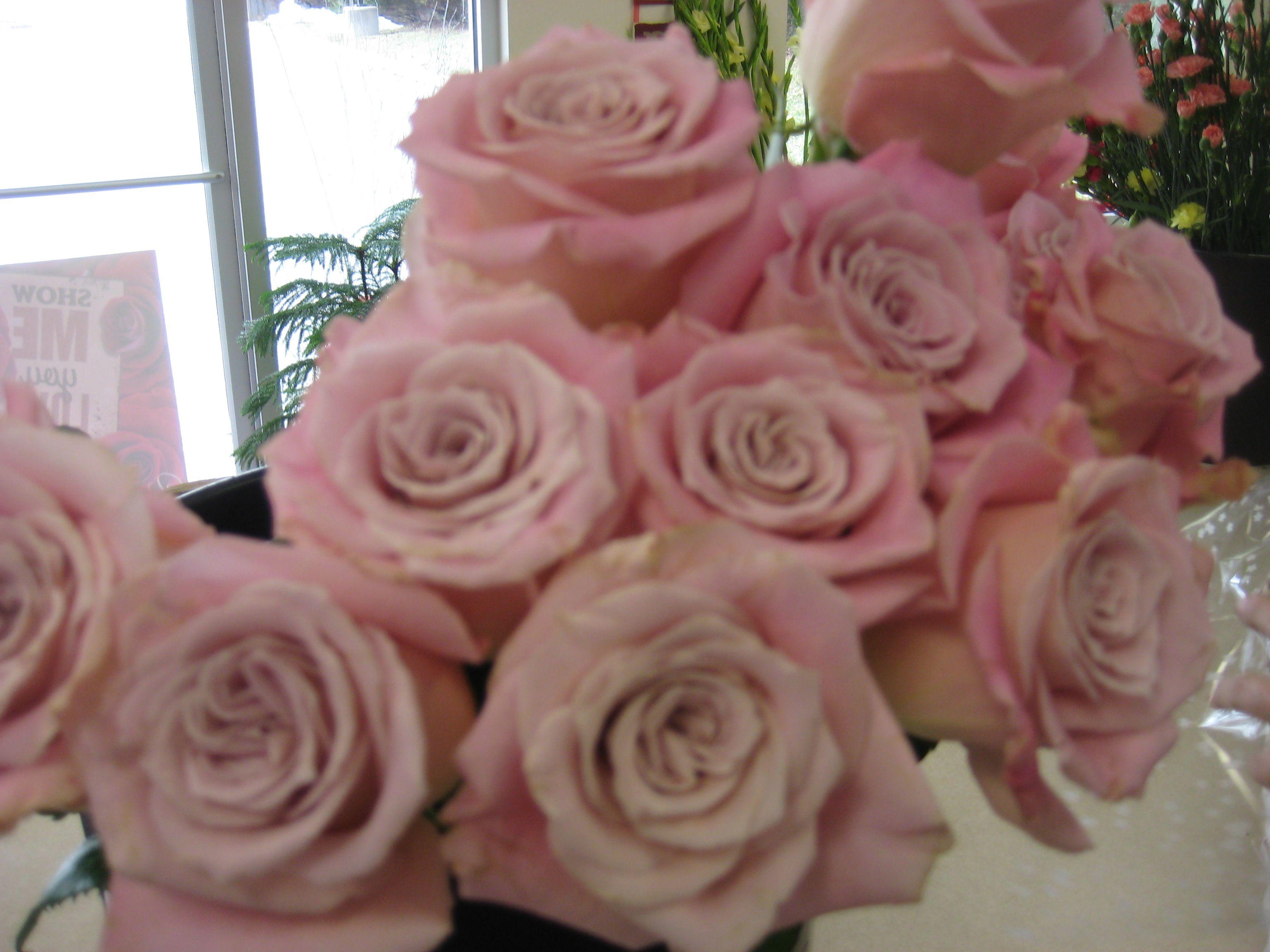 Charming Unique Rose Unique Roses Rose Flowers