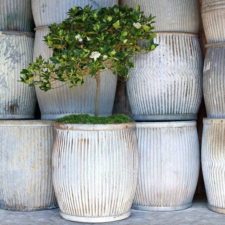 Large Terracotta Garden Pots Planters Large Outdoor Plant Pots Large Terracotta Pots White Like Drum Large Outdoor Planters Large Garden Pots Large Plant Pots