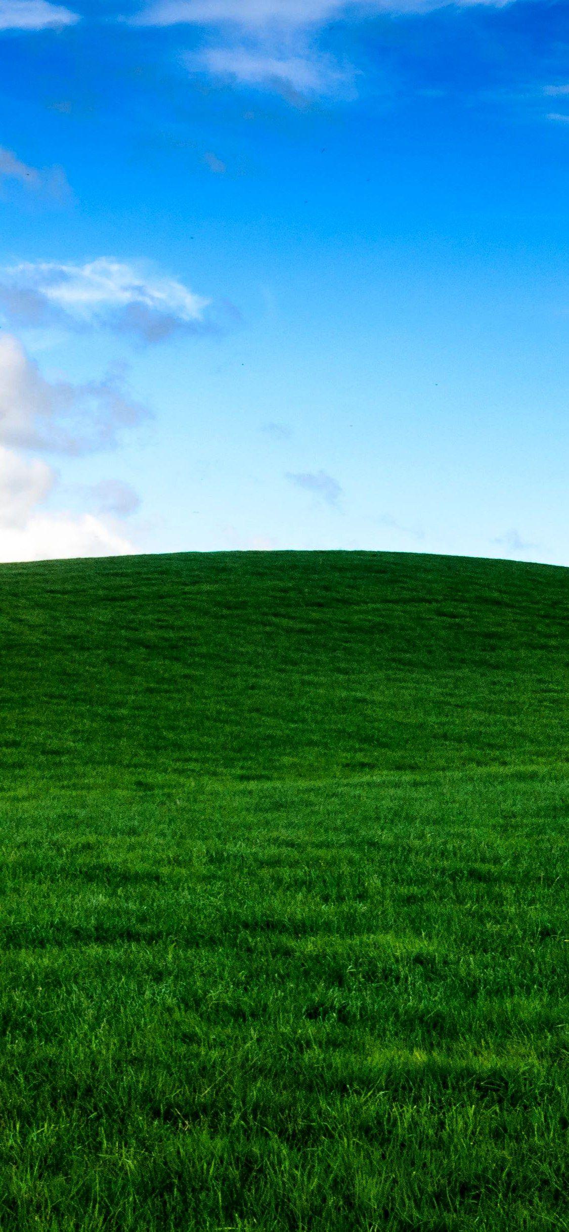 three choirs vineyard green grassy hill wallpaper Iphone X