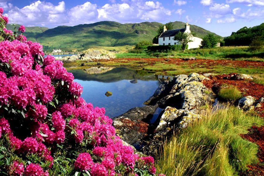 Cottage at Dornie, Lochalsh, Scotland