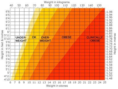 Morbidly Obese Chart We Need To Be Careful About Our Judgement Of
