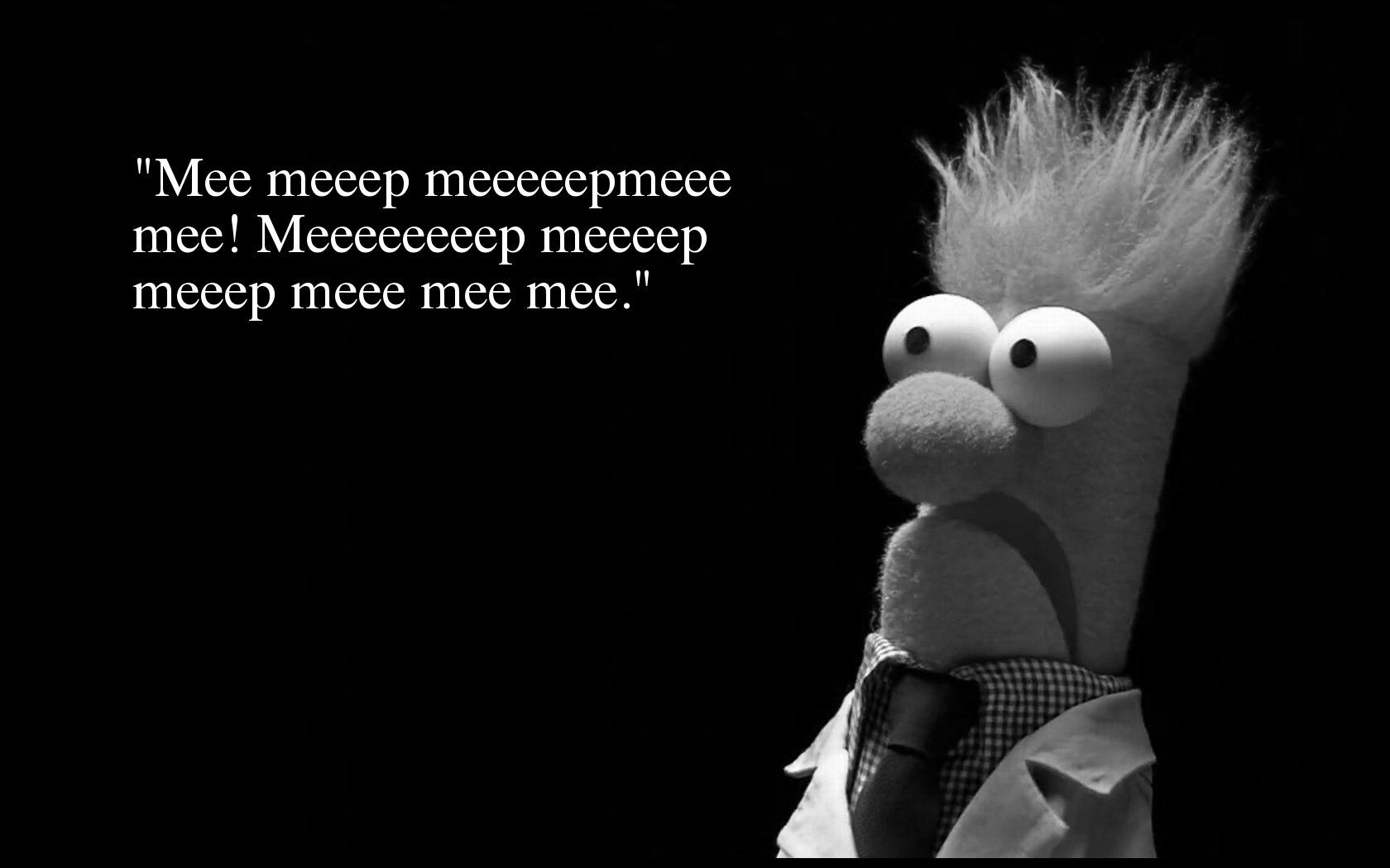 Beaker Silly Words Words Of Wisdom Quotes Wisdom Quotes Funny