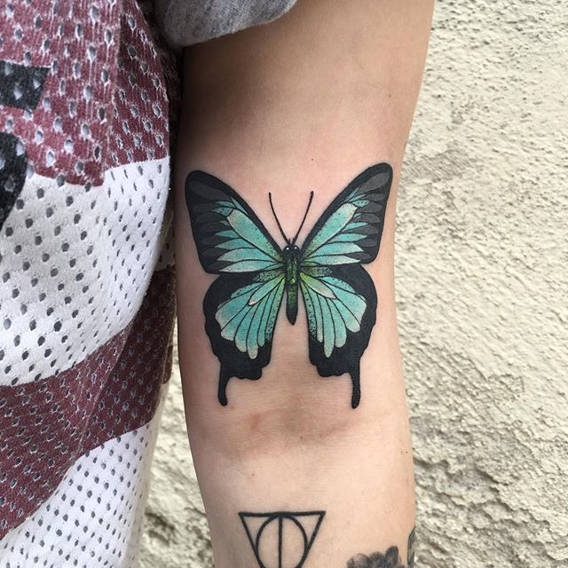 a51988ee4 Sea green swallowtail from the other day | Art | Colorful butterfly ...