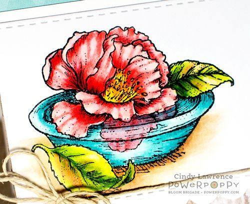 Simply Camellias stamp set by Power Poppy, card design by Cindy Lawrence!