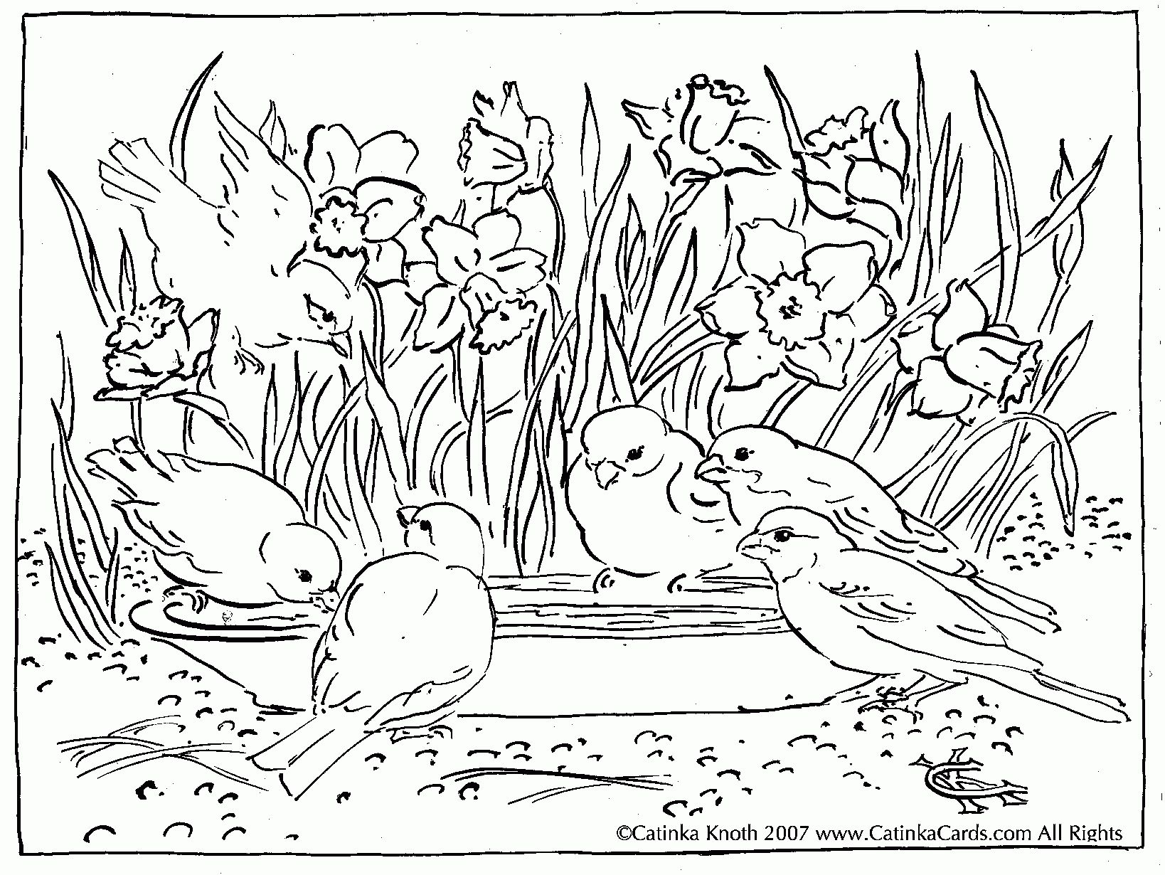 Nature Scenery Coloring Pages 1000 Images About Colouring Pages
