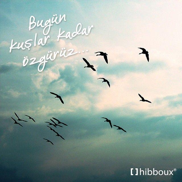 Hibboux On Instagram Cumartesi Bugun Senin Gunun Ve Bir Kus Kadar Ozgursun Hibboux Cumartesi Saturday Kus Ozgurluk Mutlu Kitap Onerileri Ask Siir