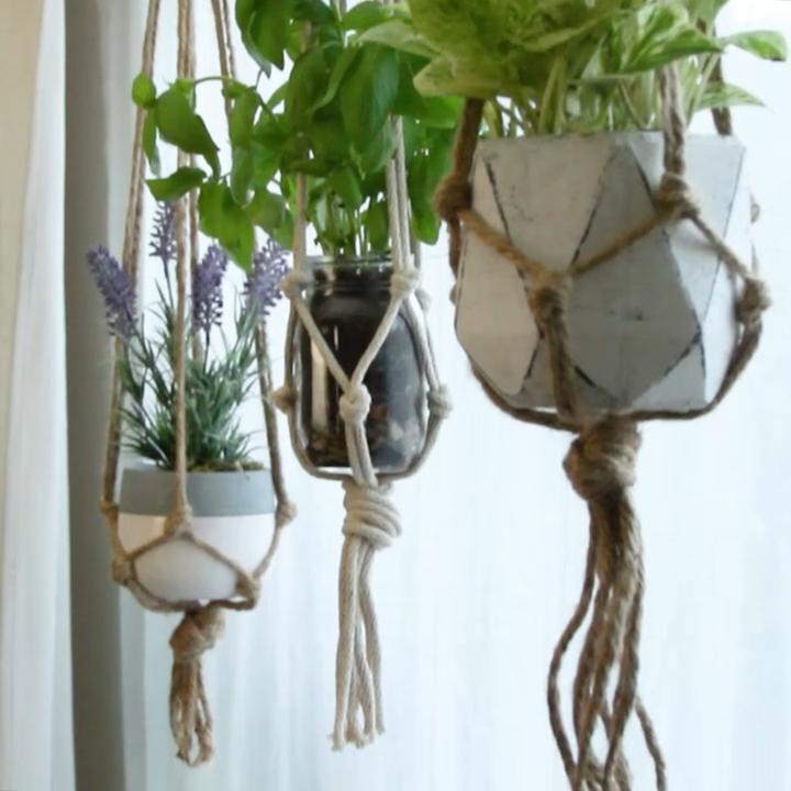 DIY Plnat Hanger