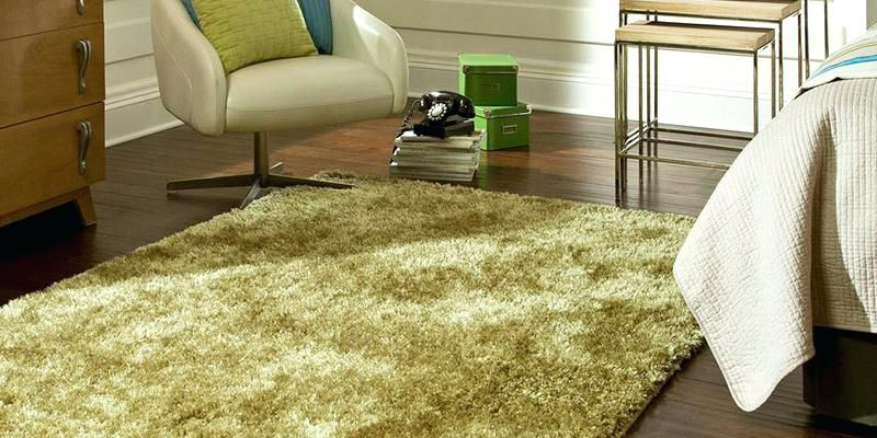 Fine Area Rugs For Wood Floors Ideas Best Of Area Rugs For Wood
