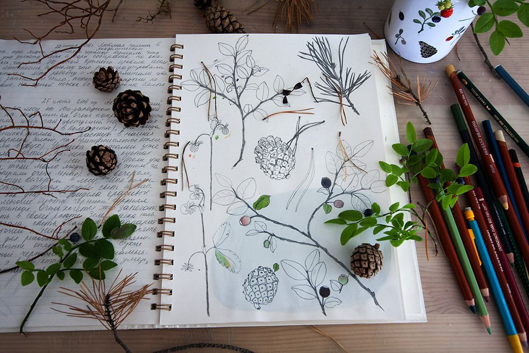 My favorite things in the forest on Behance