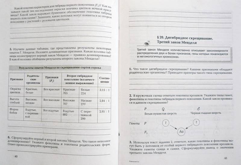 Решение задач по рабочей тетради по информатике 10 класс овчинникова