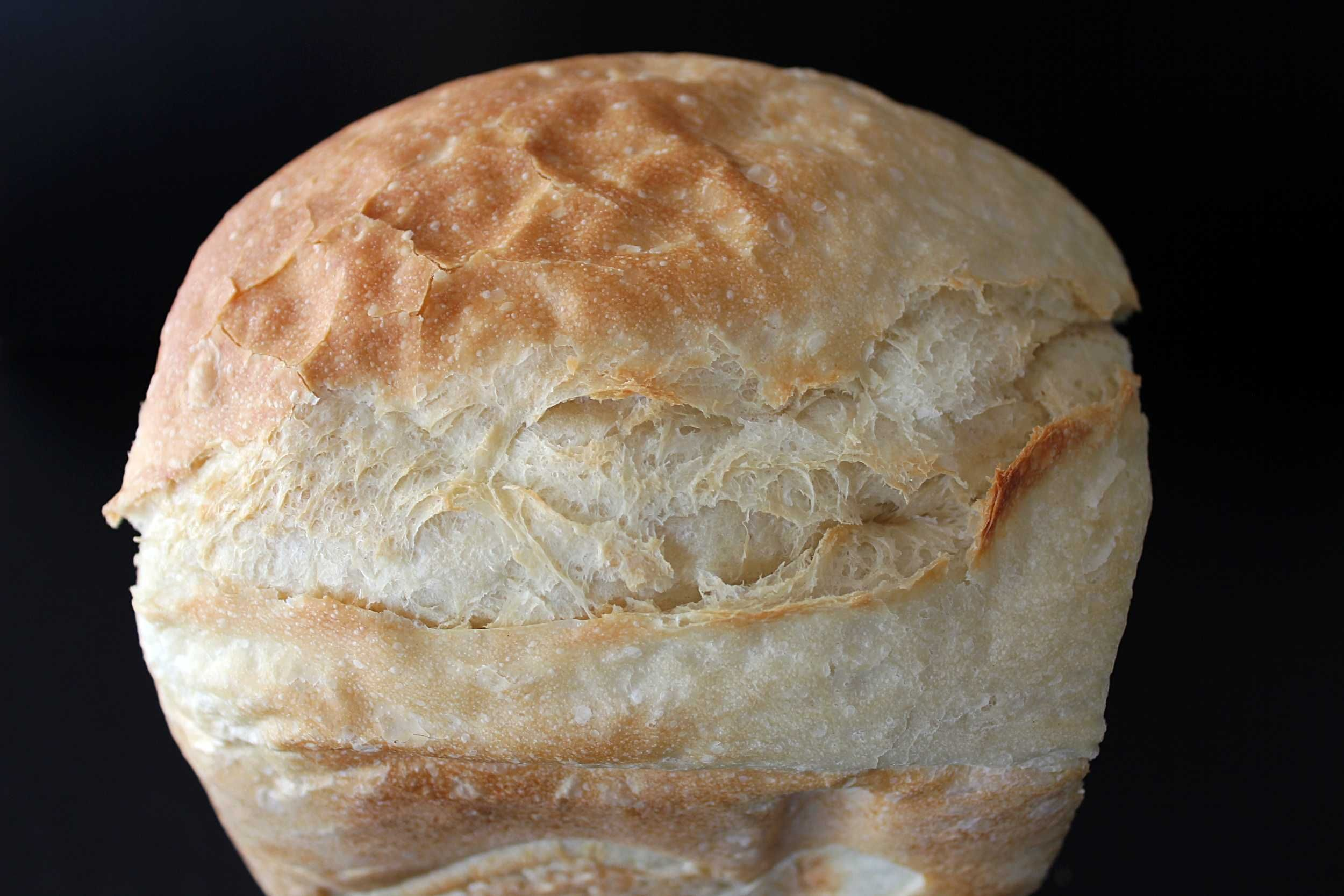 The Best Bread Machine Bread Recipe Best Bread Machine Bread