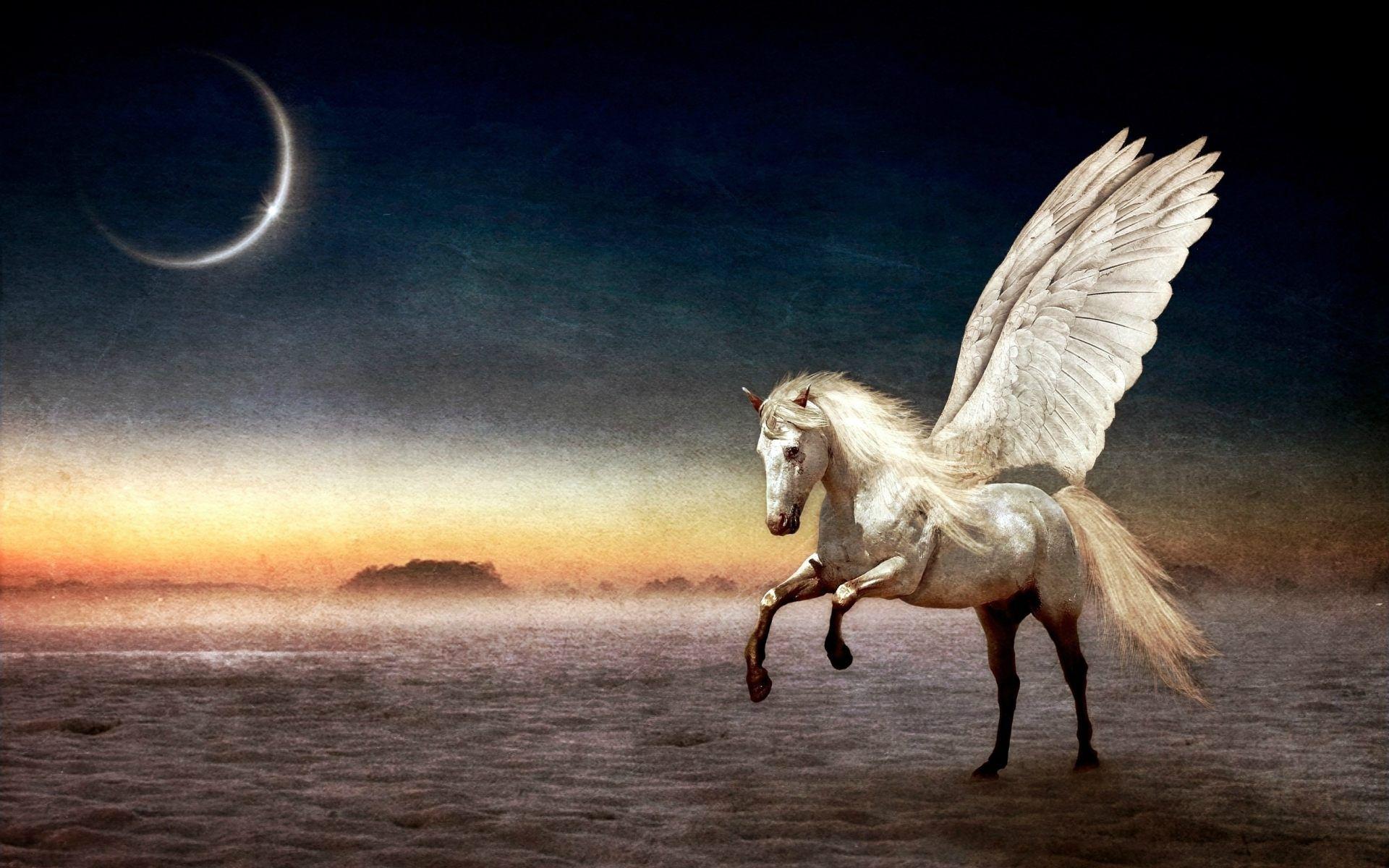 Pegasus Flying Horse Wallpaper For Desktop, PC & Mobile ...