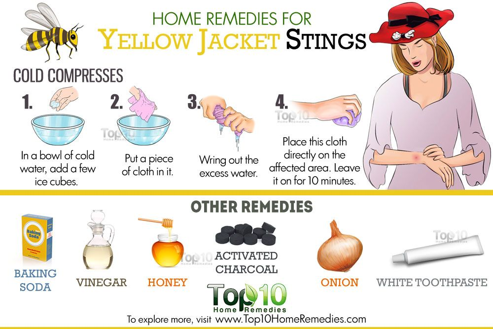 Remarkable Home Remedies For Yellow Jacket Stings Health Red Wasp Interior Design Ideas Tzicisoteloinfo