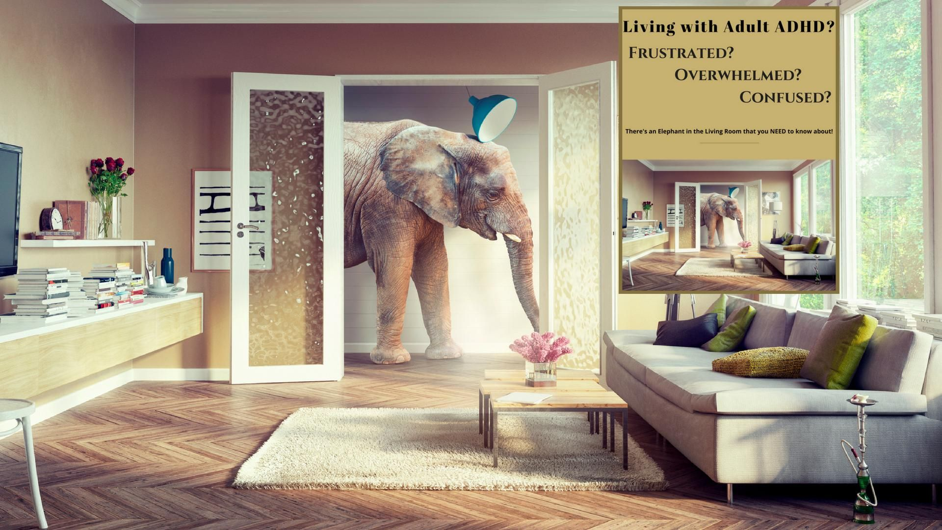 Elephant In The Room 11 Minute Video Plus Free Ebook Dr B