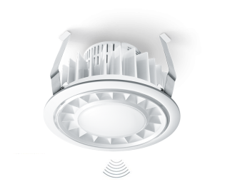 Motion Sensor LED Light RS PRO DL LED | Sensor Lights for